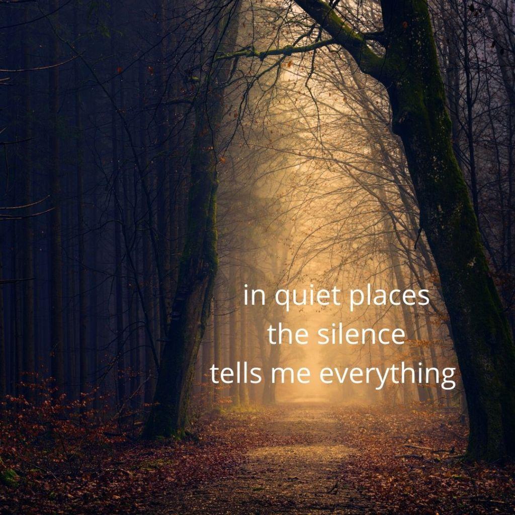 quiet _ lune